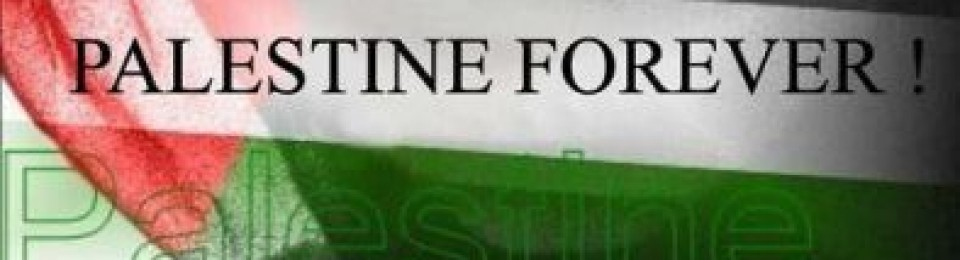 I'am From Palestine